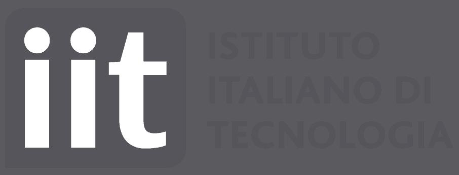 Istituto Italiano Di Tecnologia logo